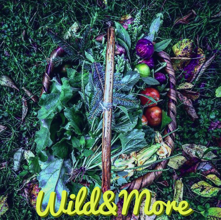 Wild&More - cibo selvatico